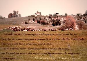 Greggi e campi come 3000 anni fa